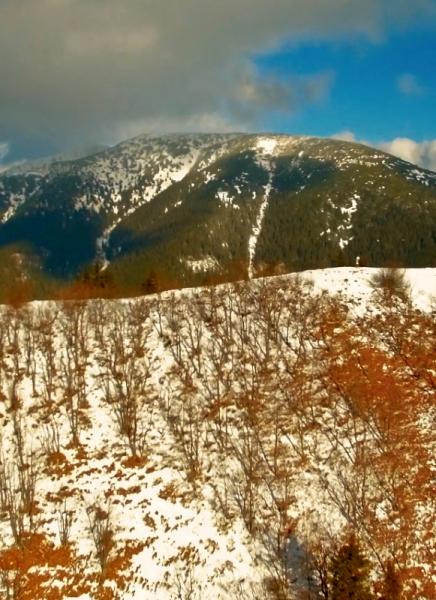 Kozí chrbát v Nízkych Tatrách a okolité výhľady